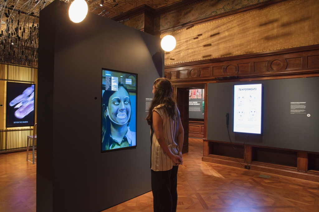 Interactive Installation, Backstory: Expression Mirror