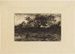 Print (France), 1813–1894