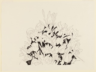 Study of a flower arrangement including tulips, lilies, and irises. Flowers shown in outline, and negative space filled in with black wash.