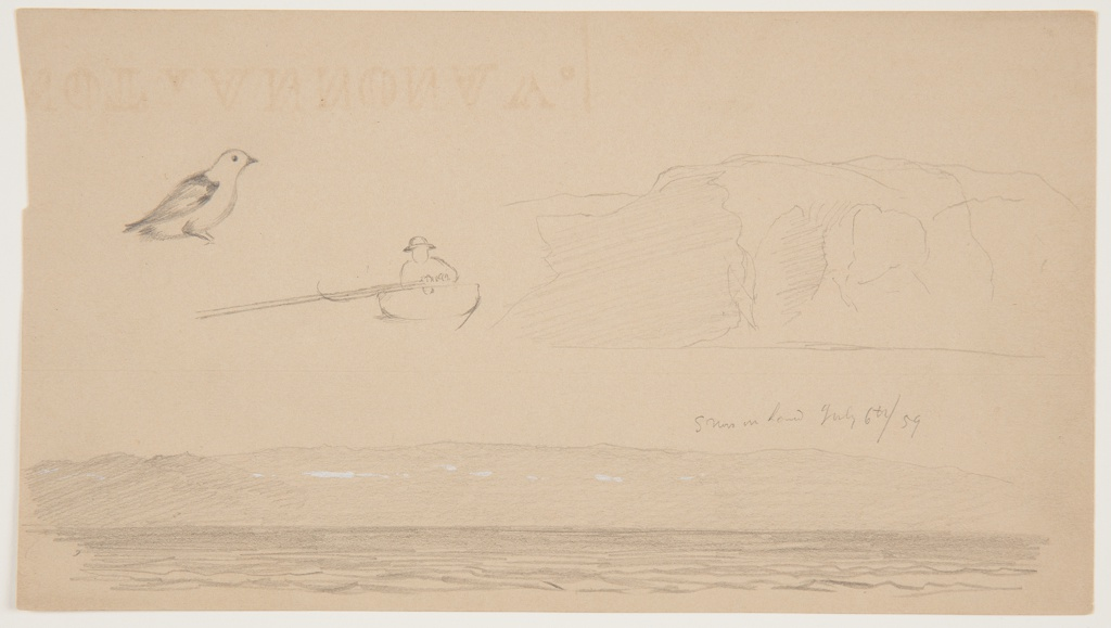 Sketches from Labrador.  In the upper left, a bird shown in profile, turned toward the right.  In the center, a boat shown from the stern, with a man rowing one oar. At right, a steep coast.  At the bottom, a hilly coast with the sea in the foreground.