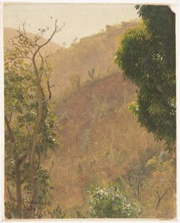 Drawing, Hillsides, Jamaica