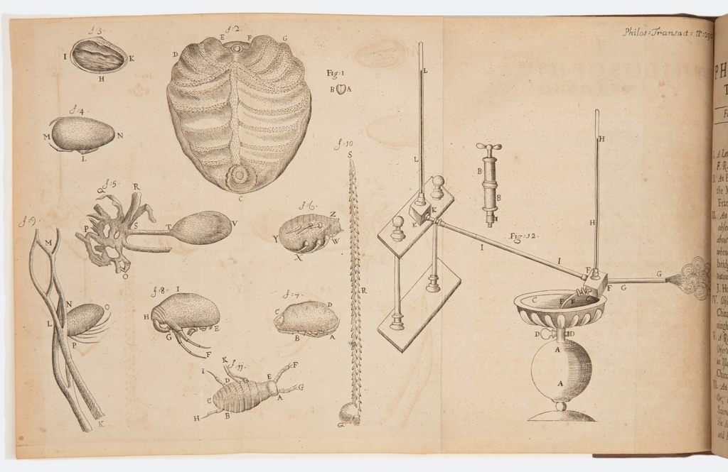 """Book Illustration, """"A letter from Mr Antony van Leewnenhoek [sic!] F.R.S. concerning Cochineel [sic!],"""" from Philosophical Transactions, vol. 24, 1704–05, pp. 1613–28, 1704–05"""