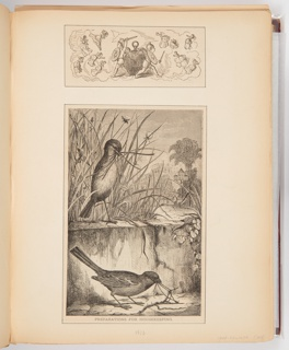 An illustration at the top of the page shows two putti with swords protecting a pocket watch. The larger illustration below shows two birds on either side of a small body of water both with grass in their mouth.