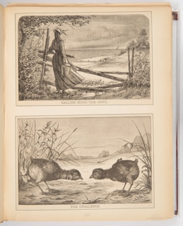 The top illustration shows a woman from the back as she looks out over a field in which cows can be seen. She holds a bucket and stands in front of a fence. The bottom illustration shows two birds with their heads bowed staring at one another.