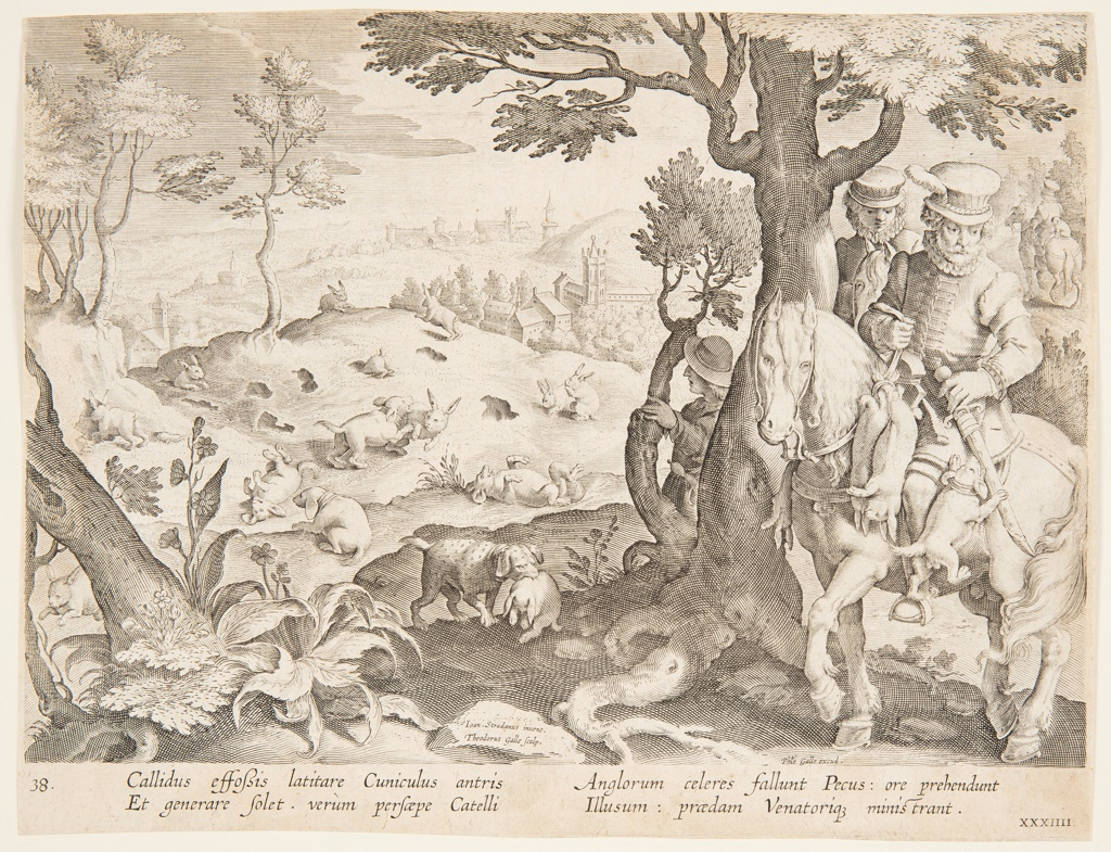 "Horizontal rectangle. The dogs hunt and trap the rabbits, left, brining their kill tot he horsemen behind the tree, at right. On a rock, left center: ""Ioan. Stradanus invent. / Theodorus Galle Sculp."" At lower right: ""Phls. Galle excud."" Below: ""CALLIDUS EFFOSSIS LATITARE CUNICLULUS..."""
