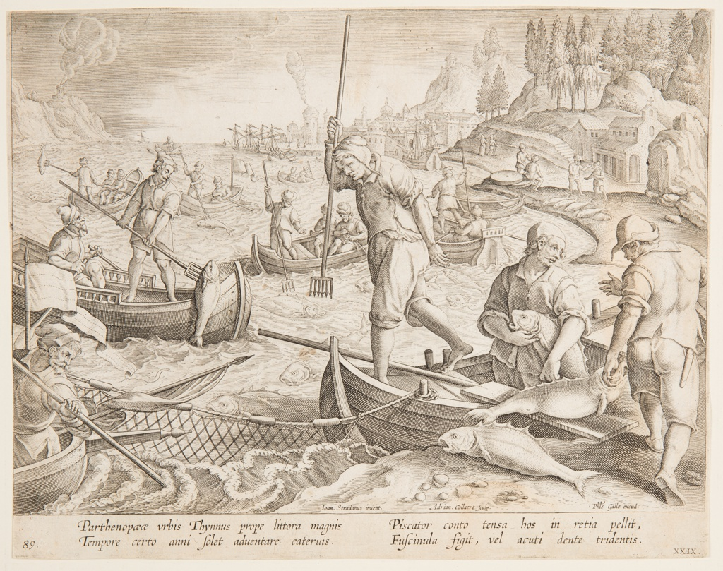 """Horizontal rectangle. Fishermen in open boats spread their net in the foreground, and spear the fish caught in it. Harbor with ships in the background at right. At left center: """"Ioan. Stradanus invent.""""; right of center: """"Adrian. Collaert Sculp.""""; lower right: """"Phls Galle excud."""" Below: """"PARTHENO PAEAE URBIS THYMNUS."""""""