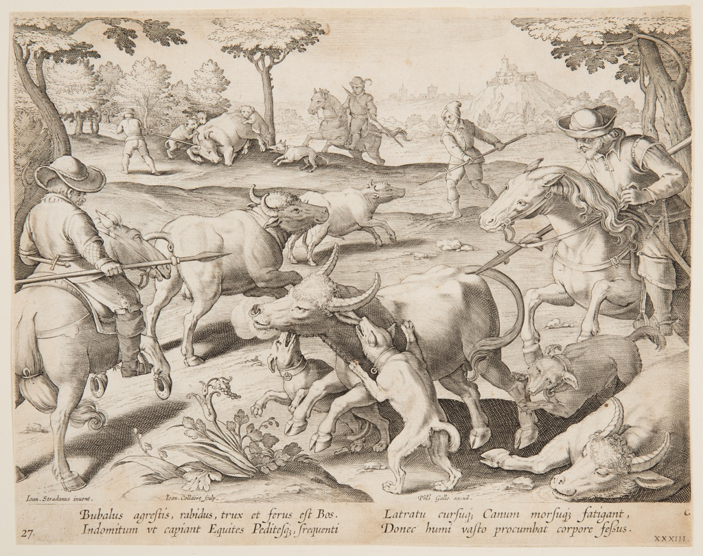 """Horizontal rectangle. Hunters on horseback and on foot, armed with spears, have surrounded a group of oxen. The hunters' dogs attack one animal, foreground. At lower left: """"Ioan Stradanus invent. Ioan. Collaert Sculp."""" At right: """"Phls. Galle excud."""" Below: """"BUBALUS AGRESTIS, RABIDUS, TRUX ET FERUS EST BOS..."""""""