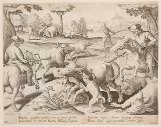 "Horizontal rectangle. Hunters on horseback and on foot, armed with spears, have surrounded a group of oxen. The hunters' dogs attack one animal, foreground. At lower left: ""Ioan Stradanus invent. Ioan. Collaert Sculp."" At right: ""Phls. Galle excud."" Below: ""BUBALUS AGRESTIS, RABIDUS, TRUX ET FERUS EST BOS..."""