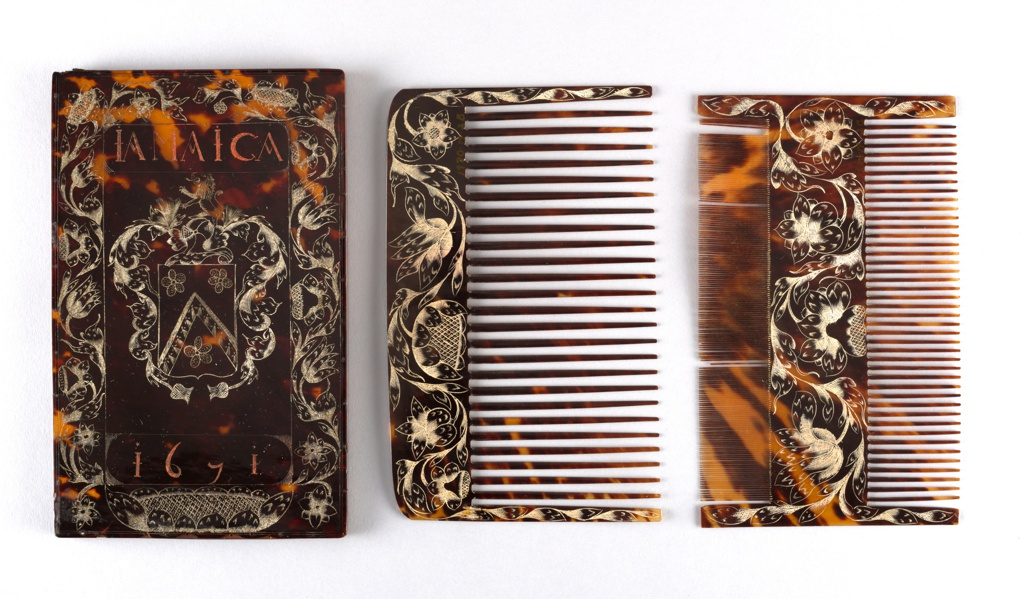 Comb Case with Wig and Lice Combs Comb Case