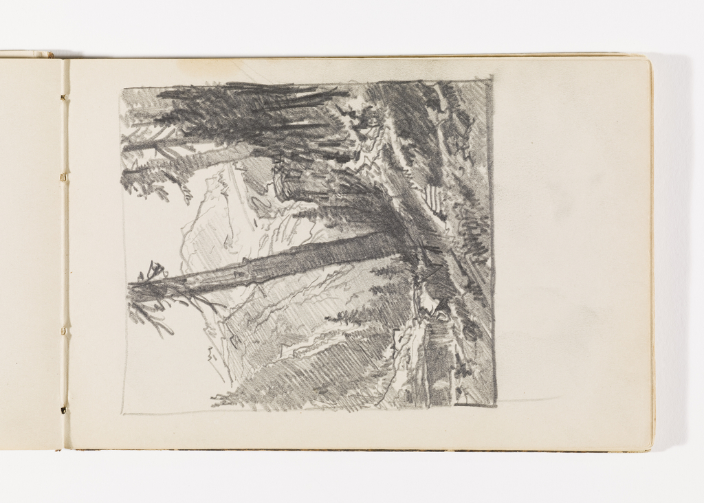 Sketchbook Folio, Mountain Landscape with Tall Trees
