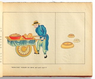 Illustrated Book