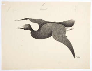 Gray, fuzzy duck with white bill, in flight toward the left.