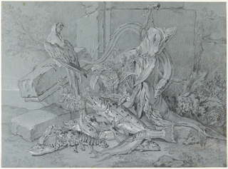 Drawing, Still-life with Fish and Parrot, 1740