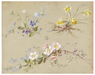 Branches with blue flowers, yellow daffodils, and magnolia blossoms against light gray ground.