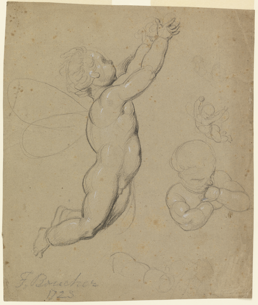 A flying putto holds his arms aaloft with something in his hands. Another flying putto and a study of the head and shoulders of a putto.  Verso: sketch of the back of a flying putto.