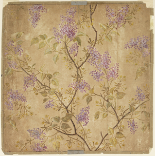 Square sheet depicting large boughs of pale purple lilacs with smaller, thinner branches of yellow flowers and buds.  One repeat shown.  Framing lines are visible around the perimeter.