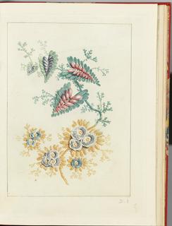 Print, Plate 3, Nouvelle suite de cahiers de flerurs naturelle a l'usage des dessinateurs et des peintres, No. 1