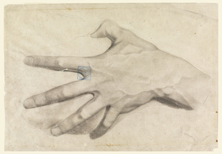 Study of a man's left hand, slightly clenched with tendons and veins apparent.
