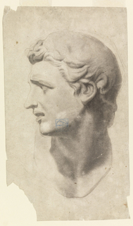 Head of a young man, turned left, expression as if in anguish.