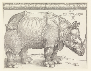 A standing rhinoceros facing right. Printed text across top of sheet.