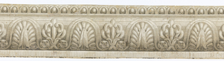 Between a top edging of small-scale egg and dart molding and a bottom edging of dentilling, two classical foliate groupings alternate, punctuated by rosettes. Printed in grisaille.