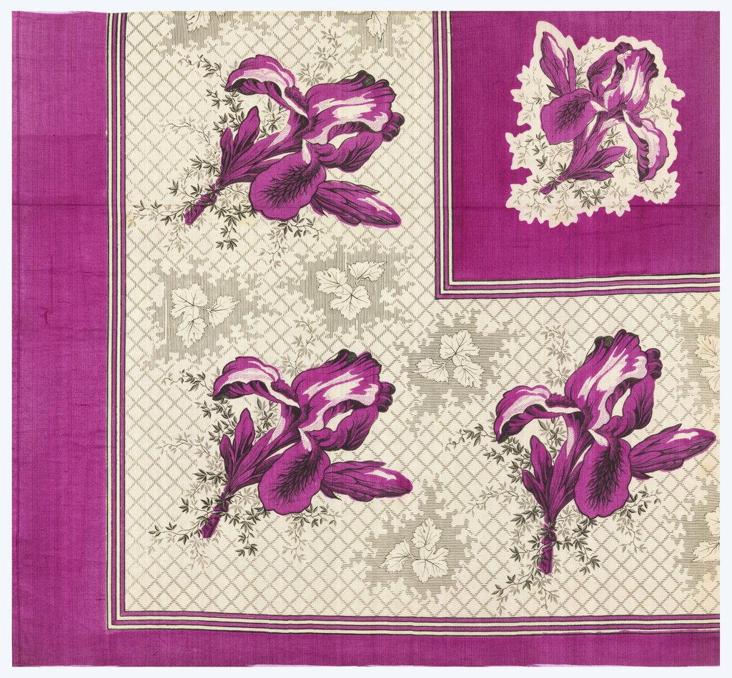 Quarter of a printed scarf with iris pattern in both the border and field. In magenta and black.