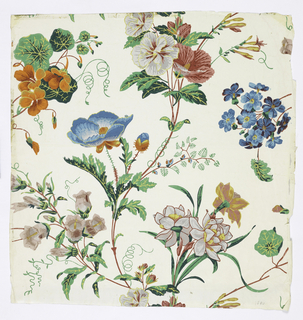Vining floral design containing several varieties of flowers, printed in colors, on white polished or satin ground.