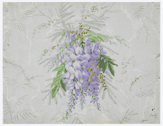 Wisteria blossom with foliage is the central motif on a background of watered silk or moire pattern.