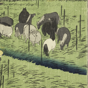 Groups of horses tethered in tall grass. Upper center, tree with crowd of horse dealers at its foot and some buildings. Apple-green grass.