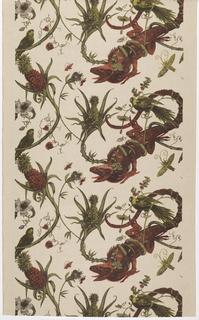 Textile, Iguanus