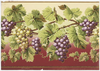 Clusters of grapes and large vine leaves growing on vertical branches. Printed in shades of purple, red, white and shades of green.