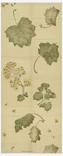 Design of scattered daisies, branches and large leaves, printed in green, brown and gold color on natural color foundation fabric.