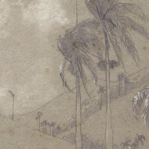 View of a valley with scattered palms and a row of maguey in the foreground.
