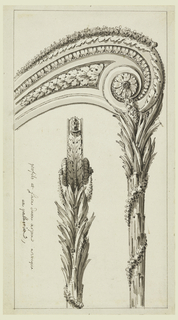 The front view is shown inside the side view. A palm wrapped with a garland supports a volute which is decorated with registers of leaves.