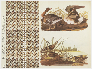 Pattern in two wide vertical columns, left column features pattern of small feathers overlapping diagonally to form side-by-side vertical bands; right column shows two Audubon bird illustrations, one of ducks and the other of sandpipers?, placed one on top the other with white space between. Printed in browns and tans on off-white ground.