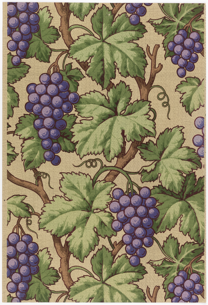 Large bunches of purple grapes hanging from vines. Printed on tan ground.