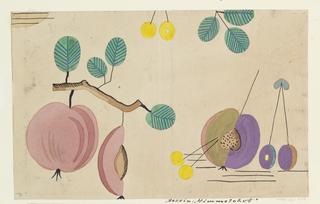 Drawing, Textile Design: Himmelobst (Heavenly Fruit)
