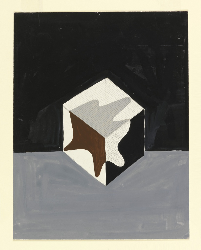 Design of a black and white cube with a splatter-like leaf shape in black, white and gray on a black and gray background. Likely for a poster background or a book cover.