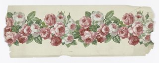 On ungrounded paper, wide band of tightly-packed full blown pink roses, buds and foliage.