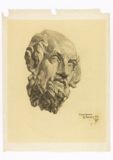 Study of a bearded head, turned half to the right, presumably drawn from a plaster or stone model.