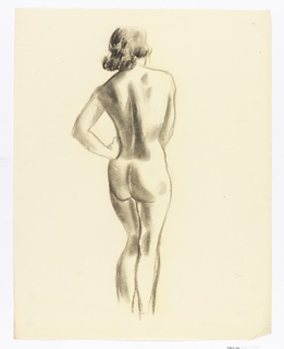 Study of nude woman, back view.