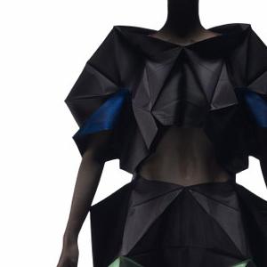 Skirt And Top, 132 5. Issey Miyake, 2012–13; design date 2010