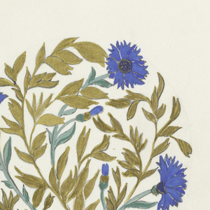 Design for a plate decorated with cornflowers with gold leaves in well; rim in gold.