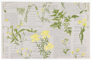 Portions of printed pages of an old botany book are used as a background. Over this are loosely drawn, in green and yellow, plants and flowers. Incomplete repeat. Printed on pale gray ground.