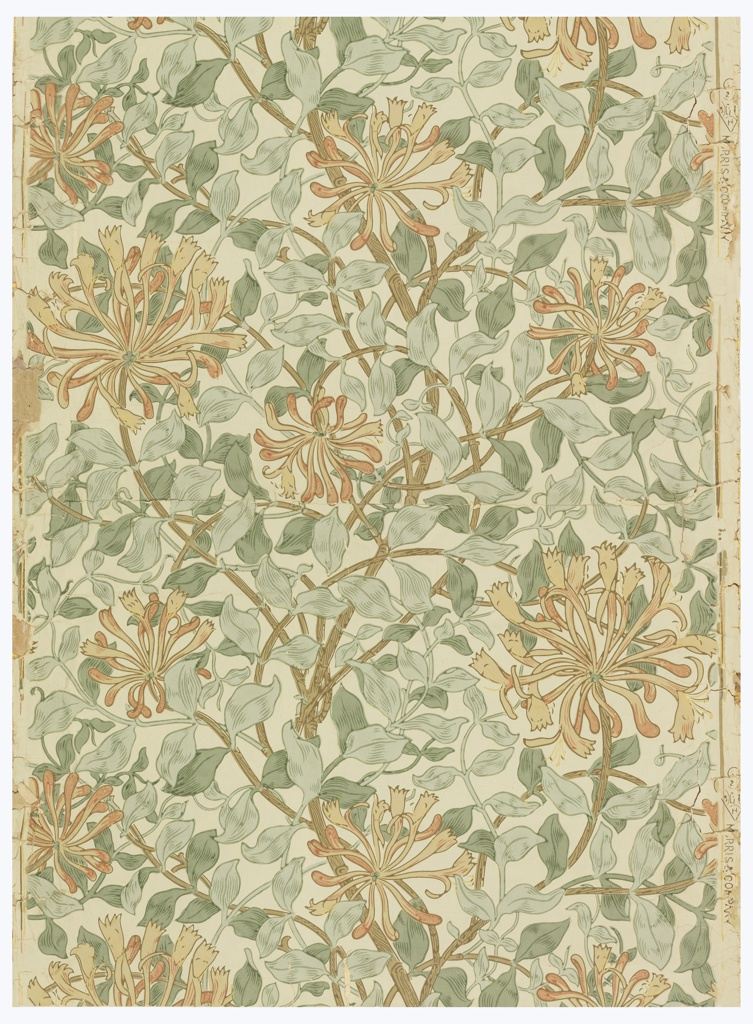 All-over pattern of meandering honeysuckle flowers and foliage. Printed on off-white ground.