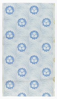 Feathery white and blue leaves with staggered round floral clusters in shades of blue.