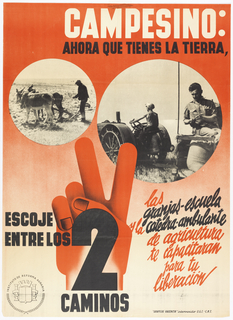 Spanish Civil War poster. On a red and white gradient ground, two close-ups of black and white photographs of a man plowing with two donkeys, and another featuring a man on a tractor in a field. Above, white and black text: CAMPESINO / AHORA QUE TIENES LA TIERRA, (Peasant: Now that you have the land); below in black and red text: ESCOJE / ENTRE LOS 2 / CAMINOS (choose between the two routes); las / granjas-escuela / y la catedra-ambulante / de agricultura / te capacitaron / para tu / liberacion.