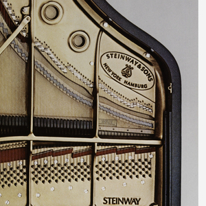 View of the top of an open Steinway piano. Left edge, in black ink: STEINWAY, THE STANDARD PIANO OF THE WORLD.