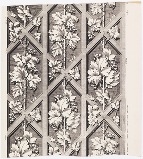 Bunches of grapes and leaves on stiff rod-like vertical vines. The vines and foliage grow under and over trellis. Printed in black on white ground.