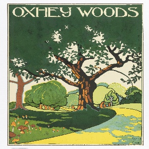 Poster design encouraging travel to Oxhey Woods via the London Underground. Landscape view with rolling hills and path leading through. In white, above: OXHEY WOODS.